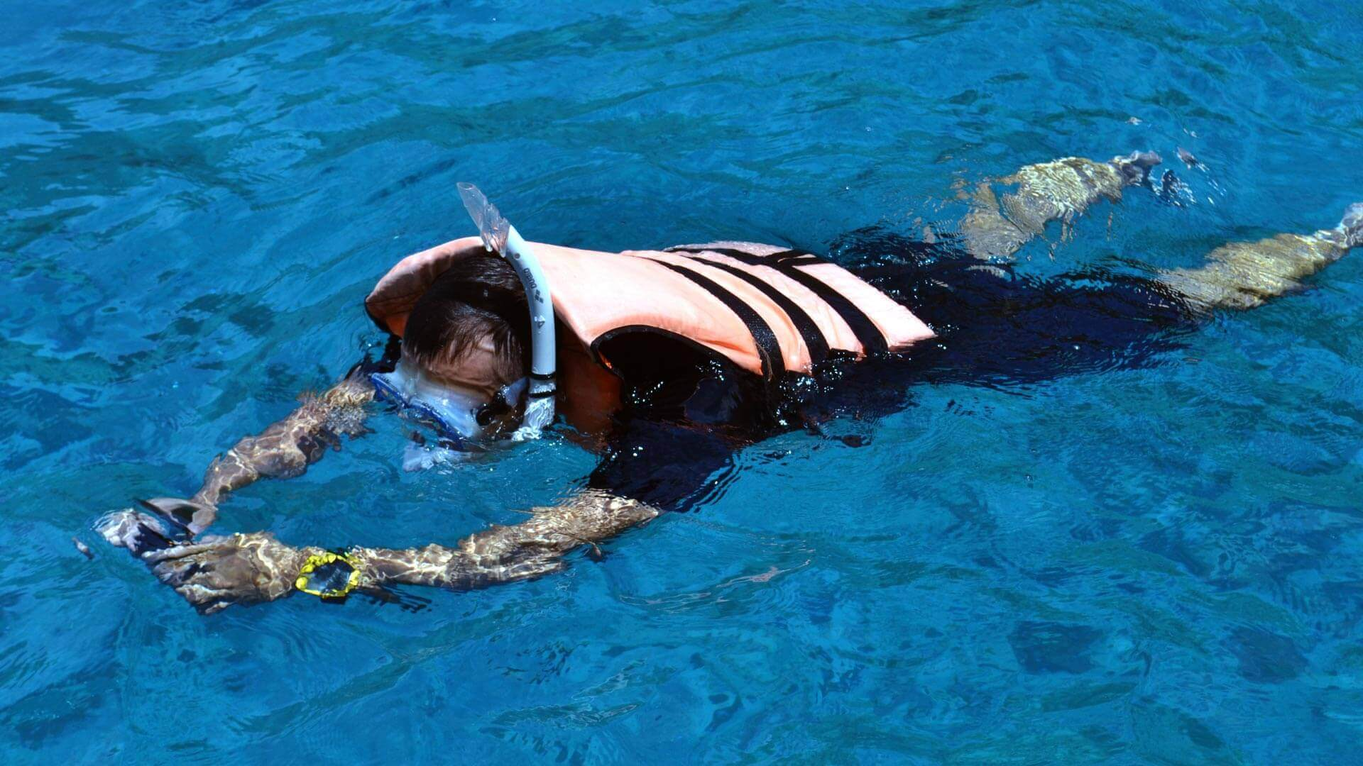 Free Diving And Snorkelling In Phuket