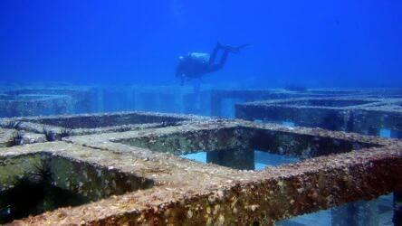 A Maze of artificial reef at bay 1 Racha Yai