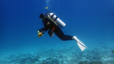 Buoyancy In Scuba Diving Is A Key Skill To Master