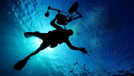 Diving Photographer In Phuket