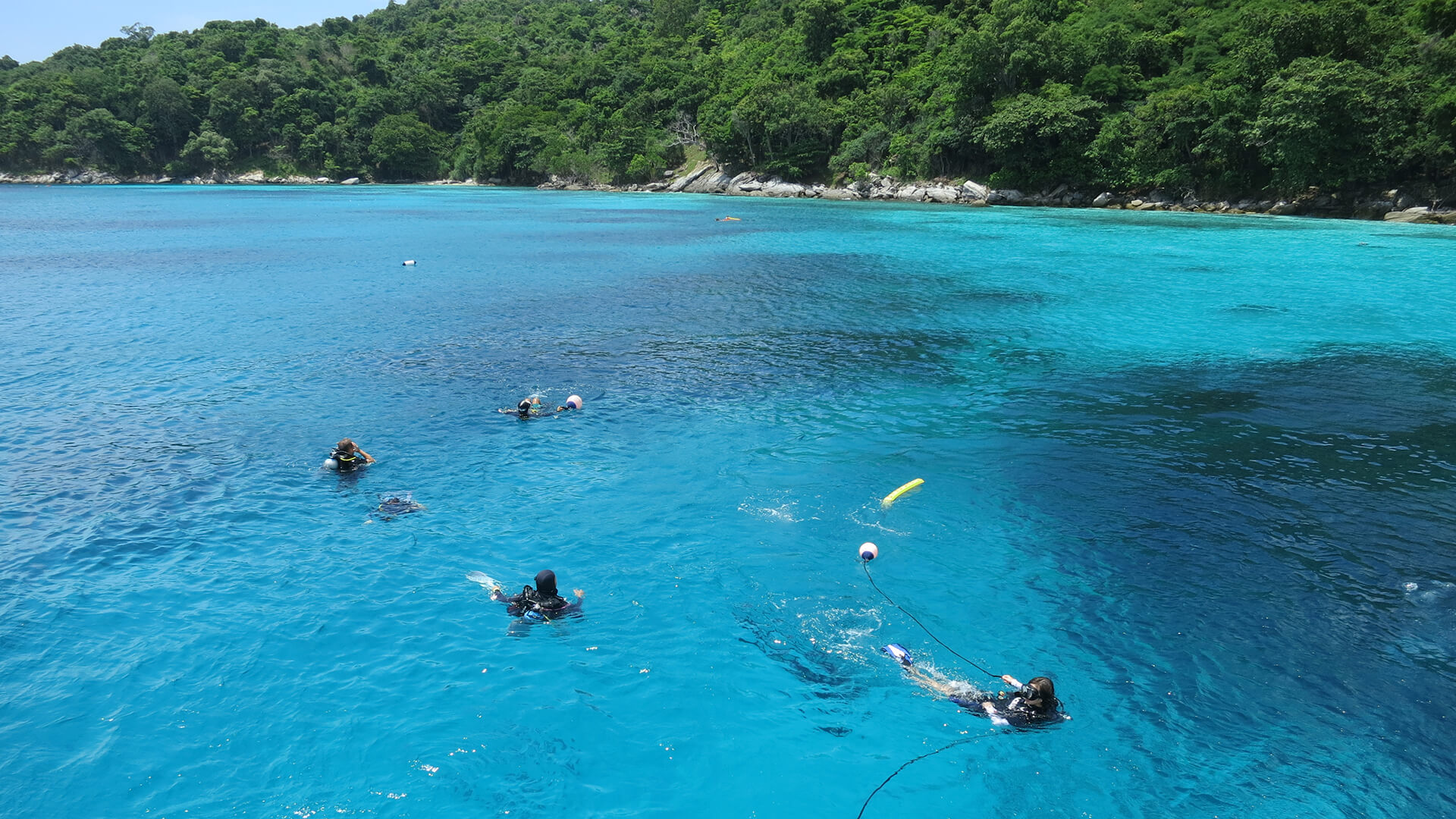 What Is The Best Time Of Year to Dive In Phuket?