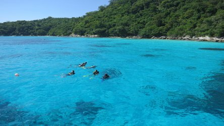 Diving In Phuket's Clear Waters