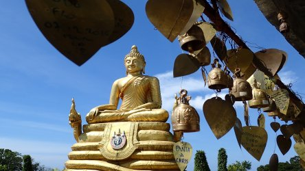 Things to do In Phuket Golden Buddha