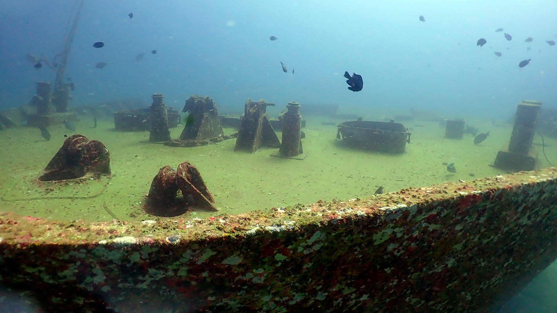 Bow Section Of The Sinaran Andaman Wreck In Racha Yai Phuket