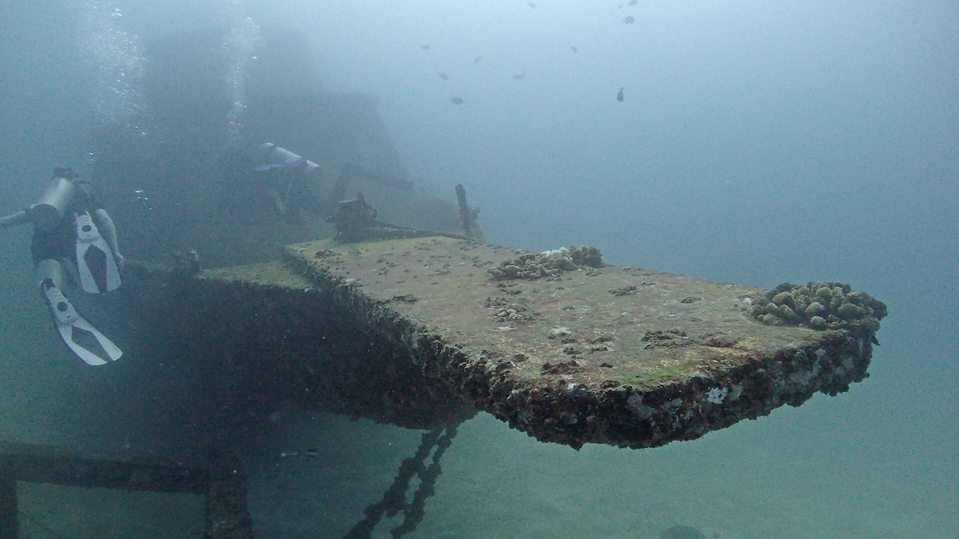Wreck Diving In Phuket And Further Afield