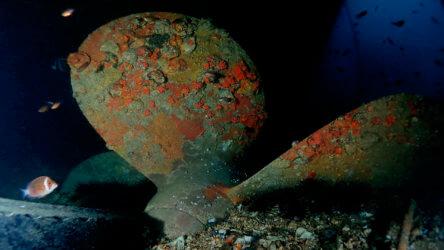 impressive proprellor underneath the king cruiser wreck phuket