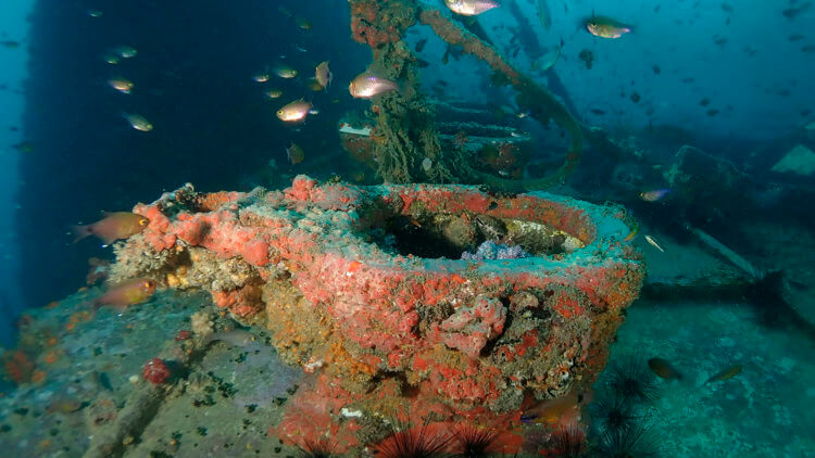uncomfortable looking toilet seats on the king cruiser wreck phuket