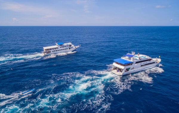 similan island liveaboards mv pawara and mv sawasdee fasai cruising