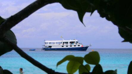 similan island december discounts