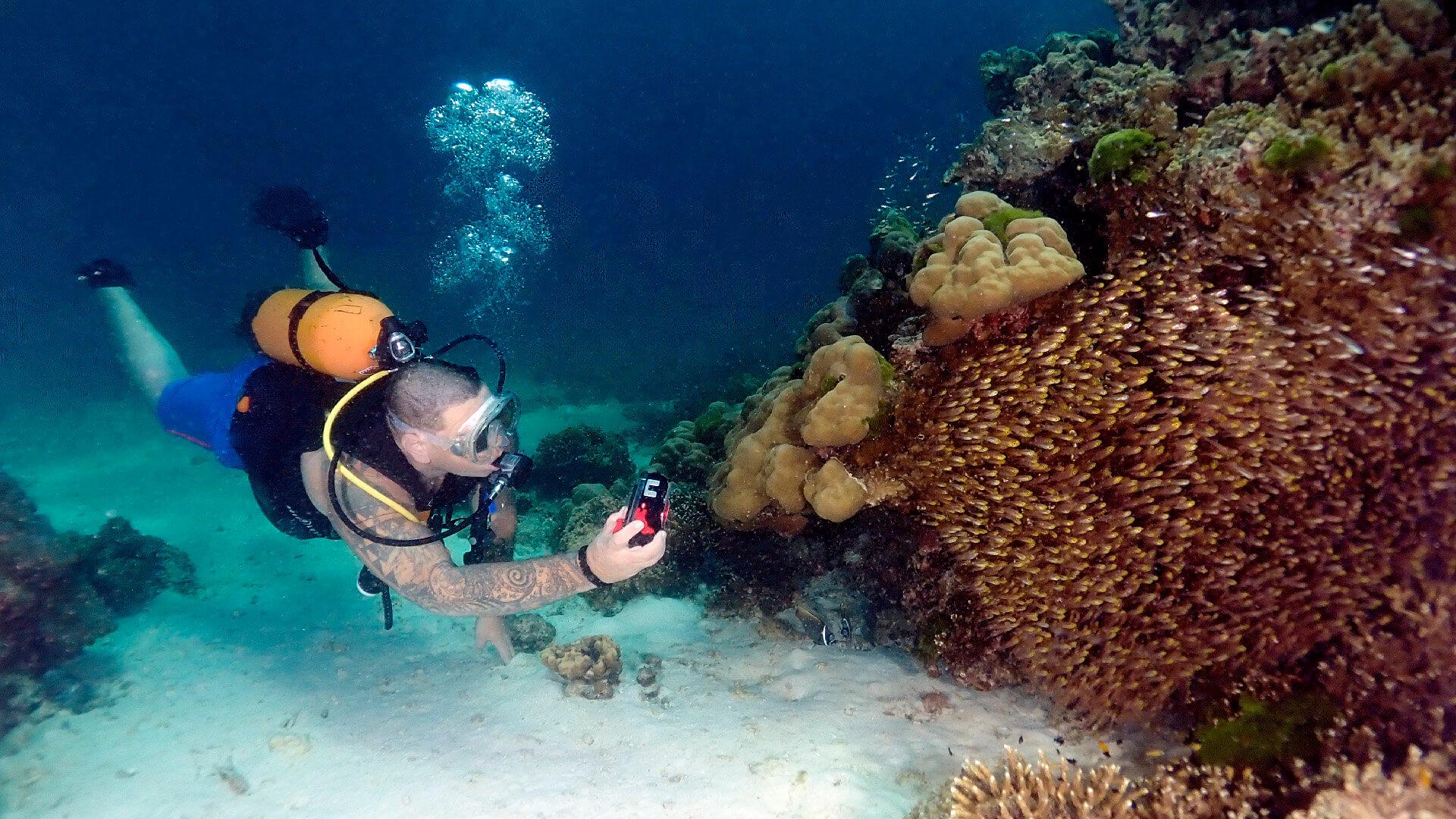 Understanding ISO Underwater