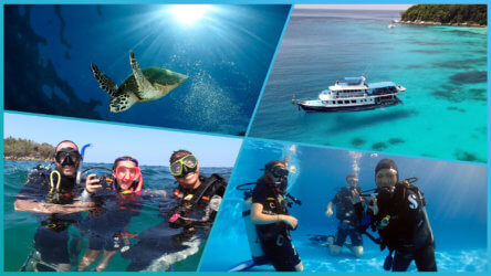 take a padi scuba diving course in phuket with local dive thailand