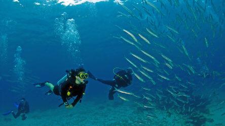 discover scuba diving students in phuket, racha yai