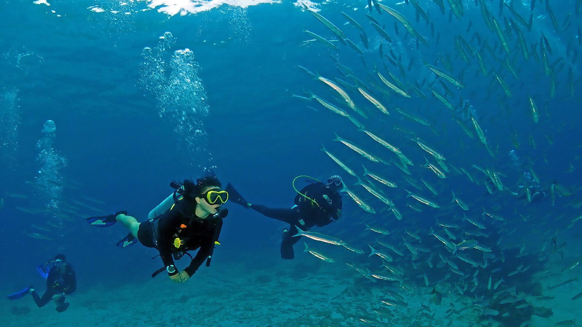 Discover Scuba Diving Phuket