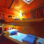watch the stars at night from the top bunk